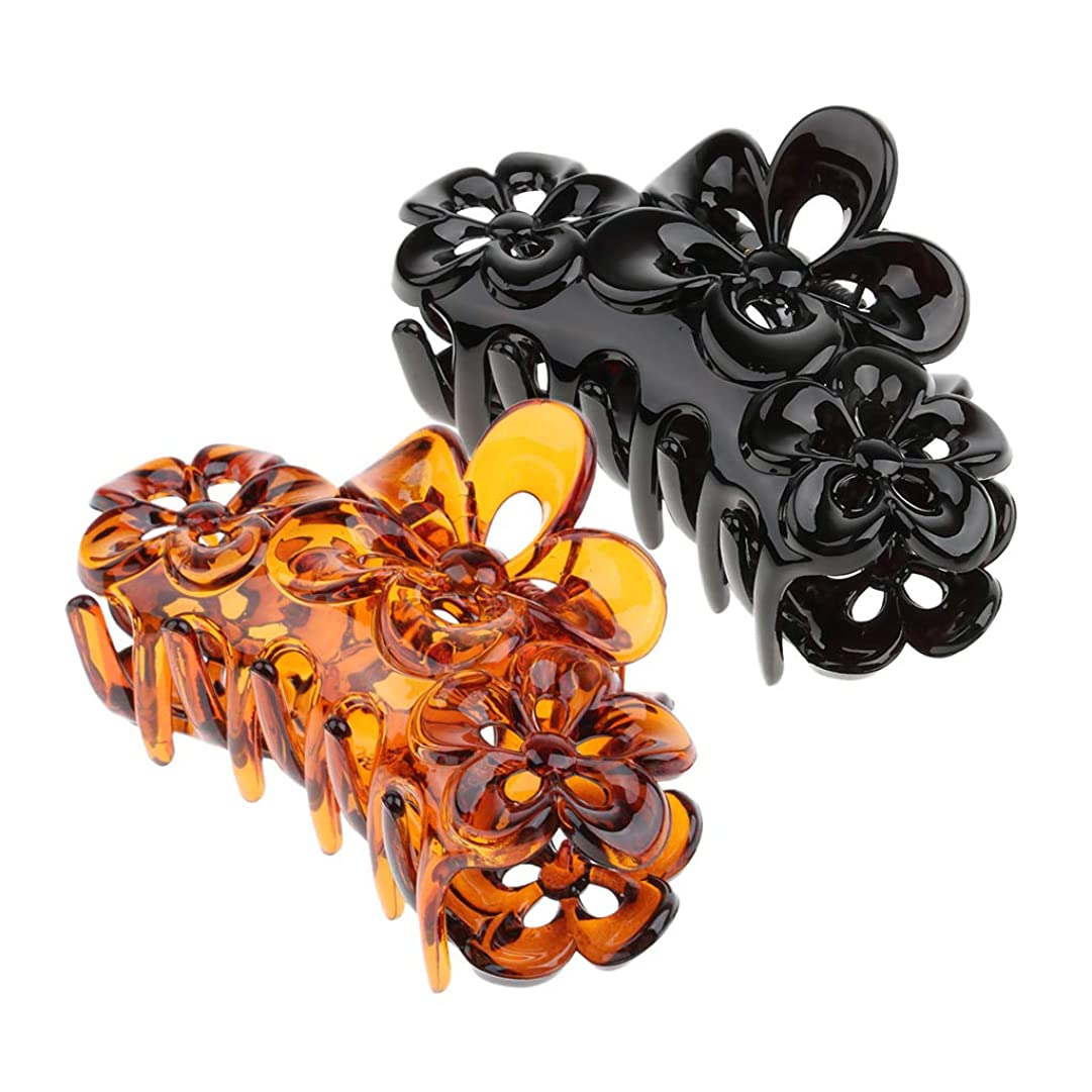 真実神経障害アルプスD DOLITY 2個 ヘアクリップ バレッタ 花 髪の爪 樹脂 髪留め 黒 +コーヒー
