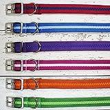 Oscar & Hooch Dog Lead - Size: 2 x 104cm - Colour: Apple Green