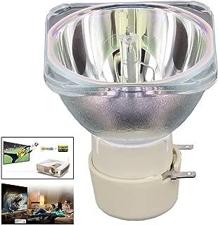 Angrox BL-FU240A Projector Lamp Bulb for Optoma HD25-LV DH1011 HD25 EH300 HD25e HD131Xe.