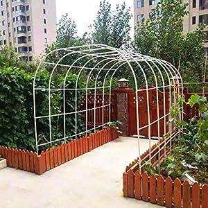 WYCD Arco de Jardín Metálico, Garden Arch, para La Planta Jardín Boda Arco de Jardín Nupcial, Estilo Rústico, Fácil Montaje, Negro, Blanco, Verde