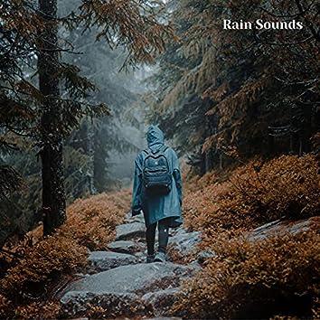 Summer Thunderstorm, Rain, Lightning Sounds, Session 3