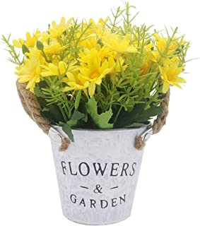 Best yellow potted flowers Reviews