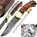 Pocket Knife Red Wood 6.5'' Damascus Steel Knife Brass Bloster Back Lock Folding Knife 100% Prime Quality + Camel Bone Stainless Steel Small Pocket Knife +Sharpening Rod Pocket Knives
