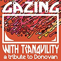 Gazing With Tranquility: a Tri [12 inch Analog]