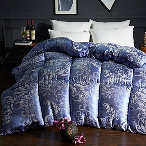 MMM Printemps et automne Quilt Air conditionné Quilt Double Individuel plus épais Coton Quilts Literie d'hiver (Couleur : #1, taille : 200 * 230cm(3.5kg))