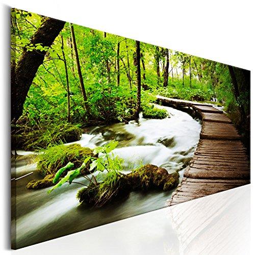 murando - Bilder 100x40 cm Vlies Leinwandbild 1 TLG Kunstdruck modern Wandbilder XXL Wanddekoration Design Wand Bild - Wald grün Baum Natur Landschaft c-B-0151-b-a