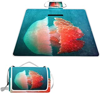 OuLian Earth Science Picnic Blanket Mat, Waterproof Foldable Play Mats for Kids, Babies, Families - Protective Beach Blankets for Park, Camping, Yard, Lawn, Sand