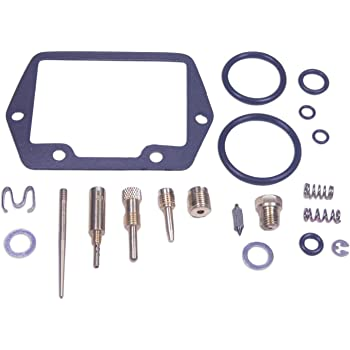 RW 0201-089 Carburetor Rebuild Repair Parts Kit Compatible with Honda