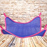 Everpert Hamaca de malla para gatos y hurones de verano transpirable (azul/L)