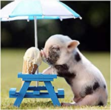 Ukerdo Ice Cream Pig DIY Diamond Painting Kits Full Drill Simple Pictures for Home Wall Arts Decortion