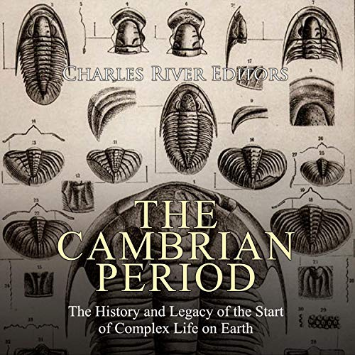The Cambrian Period Titelbild