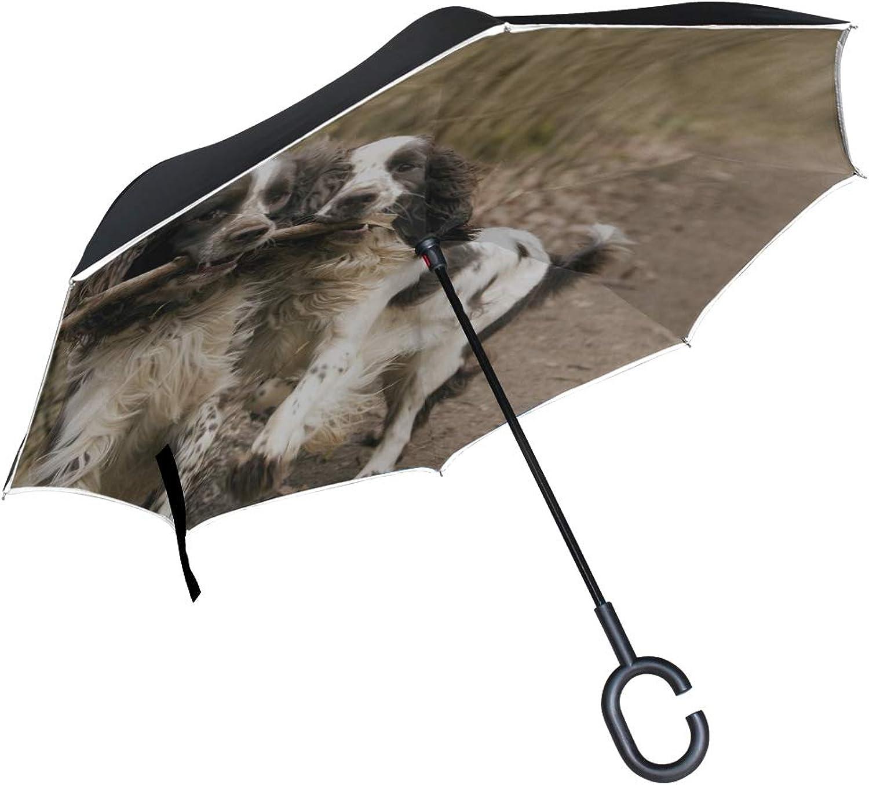 190b331ff06b Rh Studio Ingreened Umbrella Dog Couple Stick Playful Double Layer ...