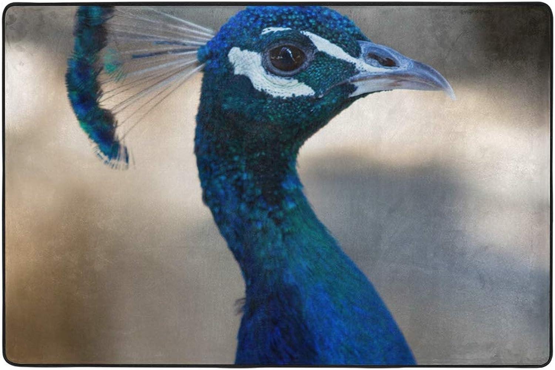 MALPLENA bluee Bird Peacock Rugs for Living Room Doormat Carpet Floor Mats shoes Scraper for Living Room Dining Room Bedroom Kitchen Non Slip
