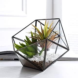Purzest Glass Terrarium,Glass Geometric Terrarium Tabletop Succulent Plant Box Planter