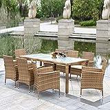 IKAYAA - Conjunto de Muebles de Ratán 9Pcs para Reunión Comedor Cenador de Jardín Terraza...