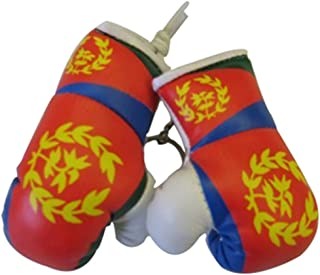 Flag Mini Small Boxing Gloves to Hang Over Car Automobile Mirror – Asia & Africa (3-Pack, Country: Eritrea)