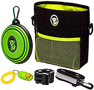 professional dog training equipment