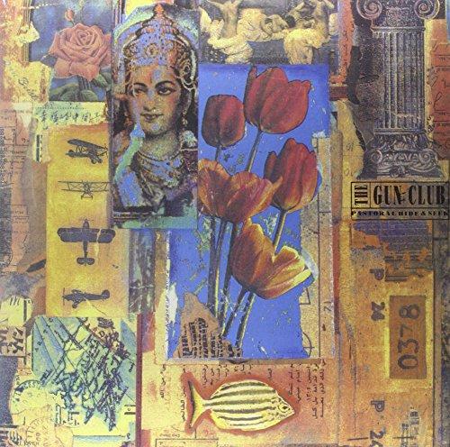 Pastoral Hide & Seek [Vinyl LP]