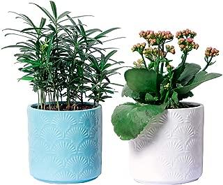 polystyrene planter boxes