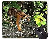 Yanteng Cojín Colorido del ratón del Tigre, Cojines del ratón del Tigre