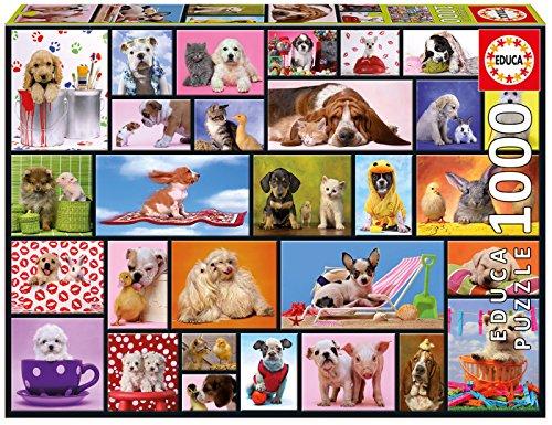 Momentos Compartidos Animales Puzzle, 1000 Piezas, Multicolor (15518)