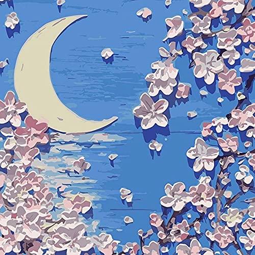 MAJSTERKOWANIE Farba olejna według numerów Sztuka dla dorosłych Dzieci, Krajobraz akrylowe do początkujących Doświadczeni Malarze Hobby Artist (40x40 CM, 50x50 cm) (Color : C, Size : 50X50cm)