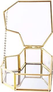 Heart-Shaped Golden Glass Jewelry Box, Small Jewel Display Clear Glass Case Organizers Lidded Treasure Box for Desktop, Dresser, Bathroom and Home Decor, Gold Brass Edge