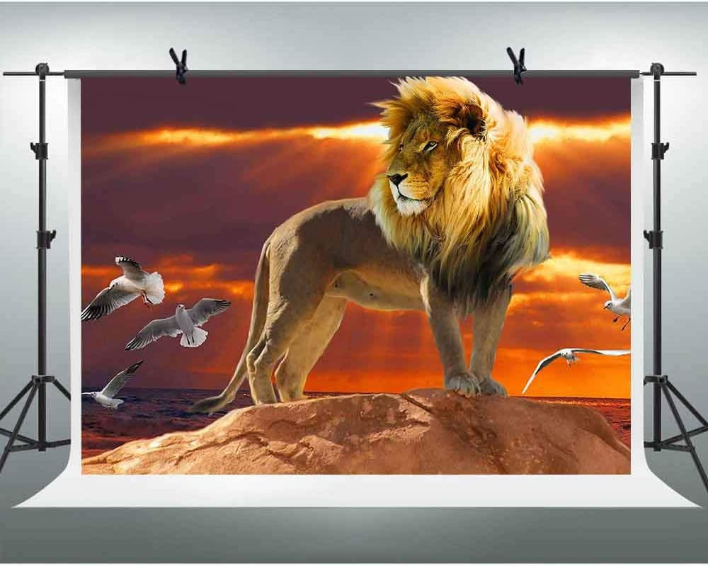 FHZON 10x7ft Lion Photo Backdrop Sunset Sky Photography Background Themed Party YouTube Backdrops Photo Booth Props LSFH399