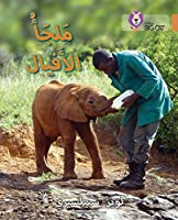 Elephant Sanctuary, Level 12 (Collins Big Cat Arabic)