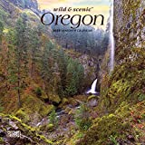 Oregon Wild & Scenic 2020 7 x 7 Inch Monthly Mini Wall Calendar, USA United States of America Pacific West State Nature (English, French and Spanish Edition)