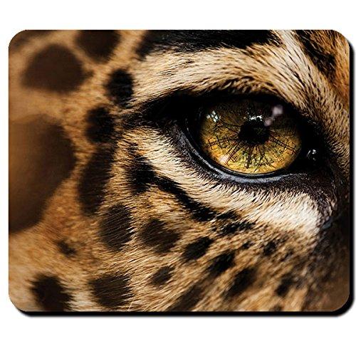 cheetah leopard print long sleeve