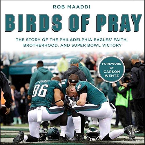 Birds of Pray audiobook cover art