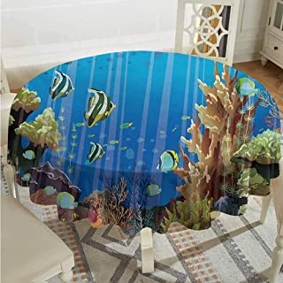 ScottDecor pad Round Tablecloth Marine Majestic Universe Deep Underwater World Exotic Coral Reef with Sea Creatures Nature Multicolor Fabric Tablecloth Diameter 36