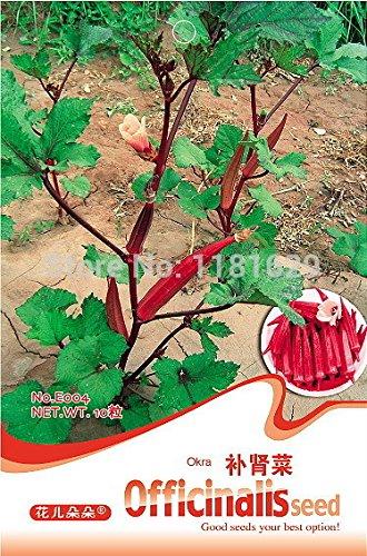 (Mix minimum 5) 1 paquet 10pcs originales graines rouges gombo Graines Gumbo Tonifiant légumes du rein pour le jardin Livraison gratuite