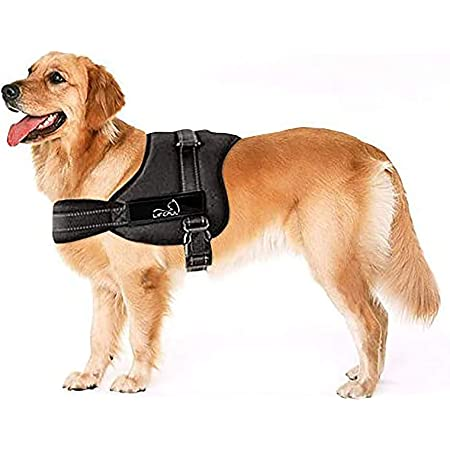Arn/és ajustable al pecho para perro con acolchado suave ayuda para el adiestramiento de paseos sin tirones