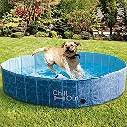 Portable Poly Plastic Dog Swimming Pools Fun For Your Pooch