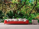Fotomural Vinilo Pared Selva Virgen | Fotomural para Paredes | Mural | Vinilo Decorativo | Varias Medidas 500 x 300 cm | Decoración comedores, Salones, Habitaciones.