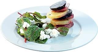 LSA International Dine Lunch/Breakfast Plate Rimmed (4 Pack), 9.8