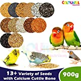COLOURFUL AQUARIUM™ - Natural & Healthy Birds Food for Budgies, Finches and African