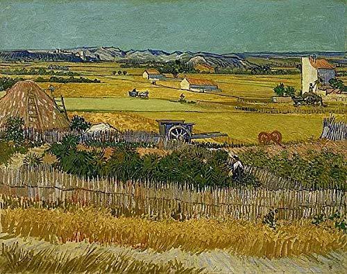 Malen nach Zahlen für Erwachsene von Banlana, Malen nach Zahlen Kits für Anfänger auf Leinwand, gerollt, 40,6 x 50,8 cm (Van Gogh The Harvest)