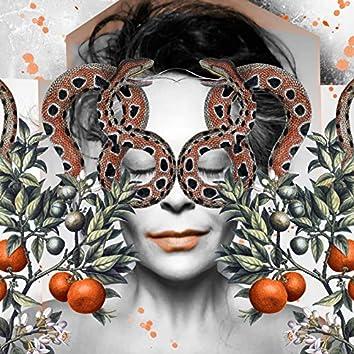 Que El Naranjo Vuelva a Estar En Flor