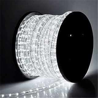 PYSICAL® 110V 2-Wire Waterproof LED Rope Light Kit for Background Lighting,Decorative Lighting,Outdoor Decorative Lighting,Christmas Lighting,Trees,Bridges,Eaves (100ft/30M, White)