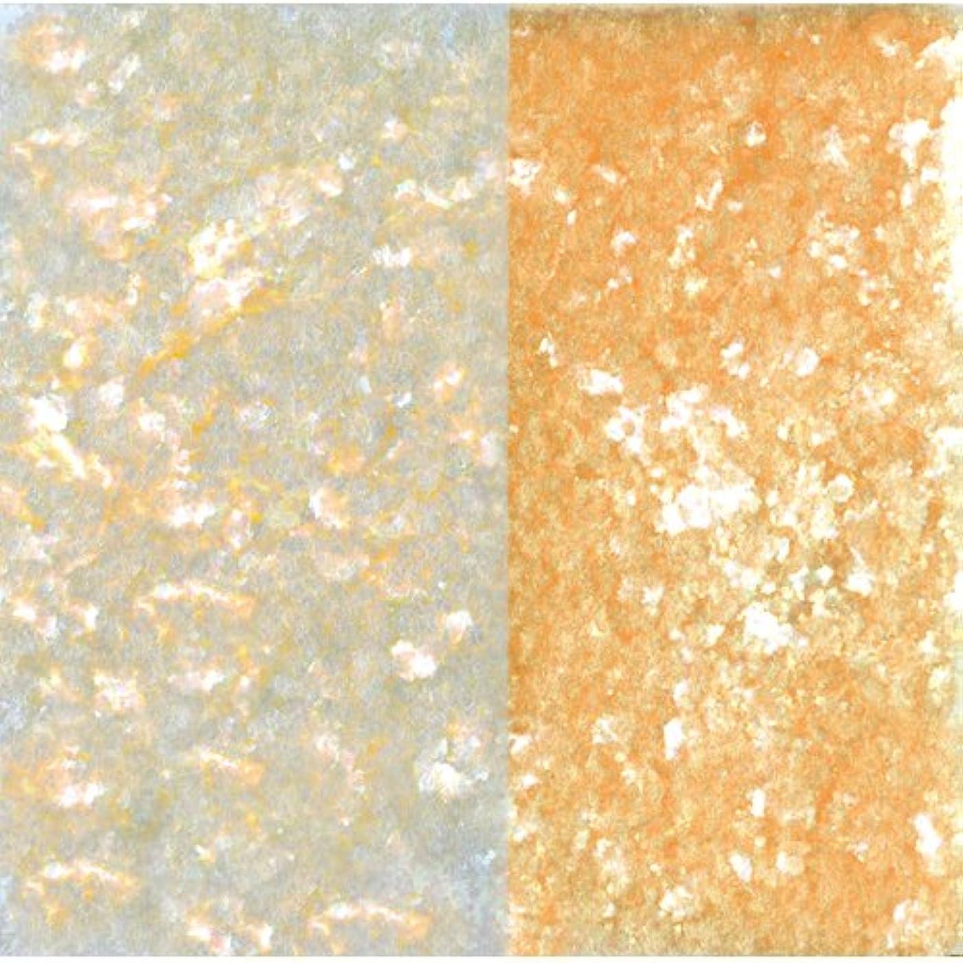 またはシーサイド裏切るピカエース ネイル用パウダー ピカエース エフェクトフレークH L #417 オレンジ 0.2g アート材