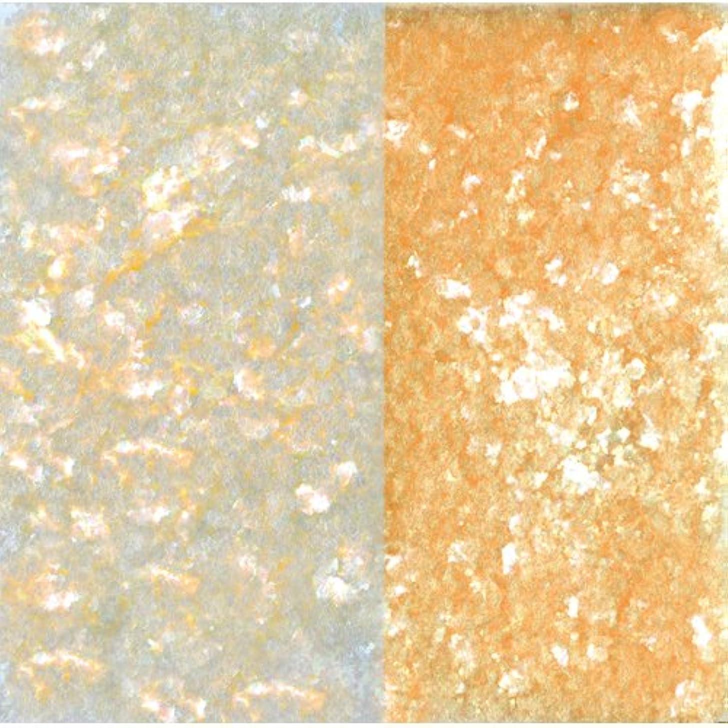 誇張する船尾腐敗したピカエース ネイル用パウダー ピカエース エフェクトフレークH L #417 オレンジ 0.2g アート材