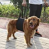 Yosoo Hilfsgurt für Haustiere, klassisches Geschirr, Tragehilfe, Hebehilfe, für ältere oder kranke Hunde zum Treppen hinauf- und hinuntergehen, EIN- und Aussteigen aus Fahrzeugen(XL)