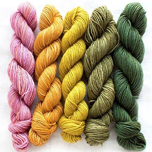 Manos Del Uruguay Silk Blend Fino Mini-Skein Set 4 Dorothea, 100g (5x20g) Merino Extrafine + Seide, handgefärbt mit wunderschönem Farbverlauf.