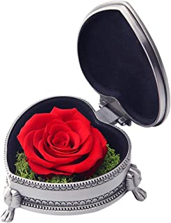 hey June Best Gifts for Her,Preserved Flower Rose,Never Withered Roses,Upscale Immortal Flowers,Female Gifts for Valentine's Day,Mother's Day,Anniversary,Birthday,Thanksgiving Day (Red Rose)