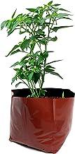 Rochfern Grow Bag for Plants Large, (Set of 20) 100% Virgin Polyethylene, (24 x 24 x 40 Cms.) Terracotta (20)