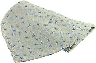 David Van Hagen Mens Small Paisley Slik Handkerchief - Ivory