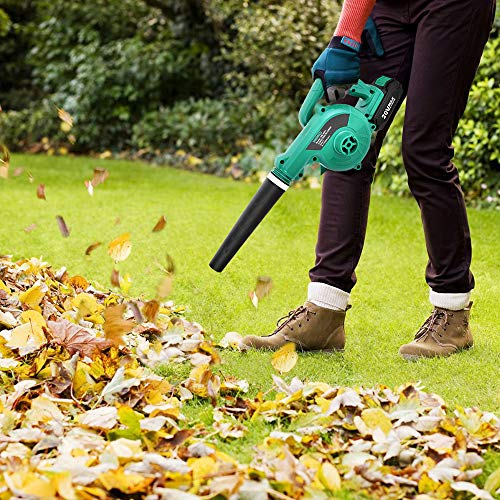 best yard vacuum for acorns